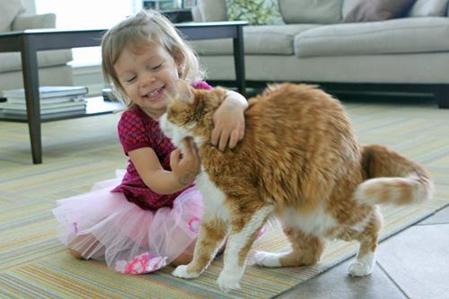 Gato and Julia